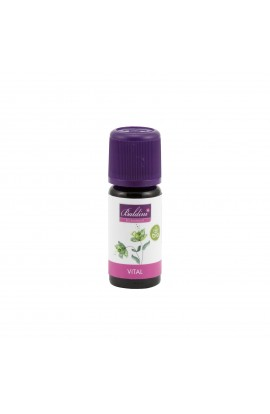 "TAOASIS, Mixture of essential oils ""VITAL, BALDINI"",10 ML"